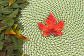 Maple leaf and wicker fall background — Stock Photo