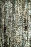 Abstract texture an old dry cracked wood — 图库照片