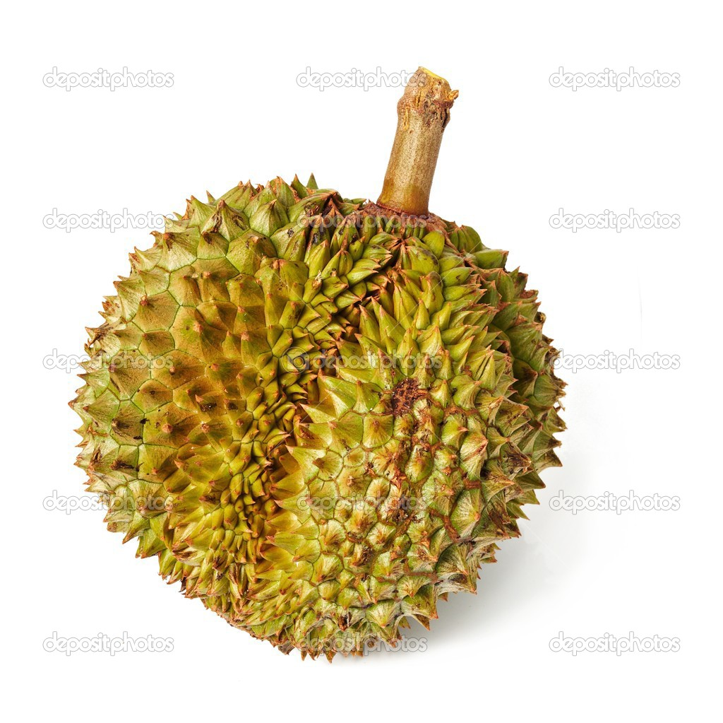 King of the fruits. Durian. Giant Tropical Fruit. — Stock Photo #3068316