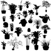 Potted plants — Vettoriale Stock