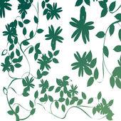Foliage — Stock Vector