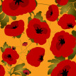Poppy — Stock Photo #3114451