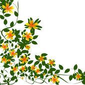 Borda floral — Foto Stock
