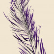 Purple feather — Stock Photo #3236520