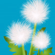 Dandelions — Stock Photo #3309975