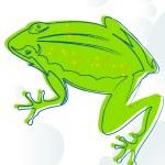 Frog — Stock Photo #3342058
