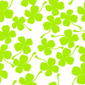Clover leaves — Stock Photo