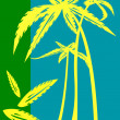 Stock Photo: Palm trees illustration