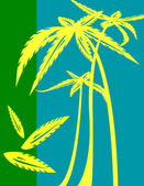 Palm trees illustration — Stock Photo