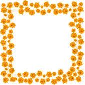 橙色玫瑰 — 图库照片