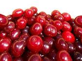 Berries cherry — Stock Photo