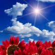Sun  cloud sky — Stock Photo