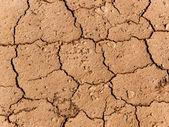 Cracks surface ground — Stock Photo