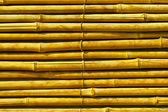Bamboo abstract background — Stock Photo