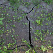 Cracks ground — Stock Photo #3452197