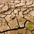 Cracks soil — Stock Photo #3576468