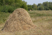 Stack hay grass — Stock Photo