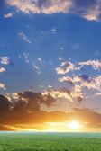 Sunset sky clouds — Stock Photo