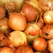 Vegetables  onions  napiform — Stock Photo