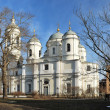 Stock Photo: Prince Vladimir Cathedral