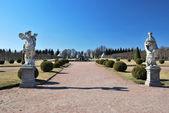 Peterhof. Upper Park — Stock Photo