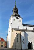 Tallinn, Dome Cathedral — Stock Photo