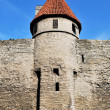 Stock Photo: Tallinn, Vyshgorod. Small fortress tower