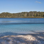 Fraser Island, Australia — Stock Photo #2869008