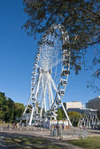 Brisbane, austrálie — Stock fotografie