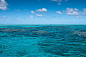 Surface of the Great Barrier Reef — Stock Photo