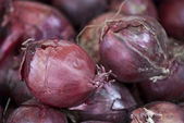 Onions in a Market — Stockfoto