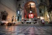 Chiesa del carmine, pisa — Stok fotoğraf