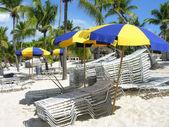 Detail of the Coast of Santo Domingo — Stock Photo