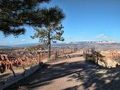 Bryce Canyon, Utah — Stock Photo