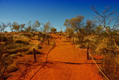 Outback australiano — Foto Stock