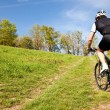 Mountain bike cyclist riding uphill - Stock Photo