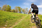 Mountain bike cyclist riding uphill — Foto Stock