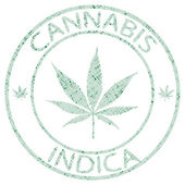 Sello de cannabis indica — Vector de stock