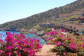 Beautiful view on villas — Stock Photo