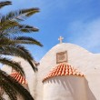 Orthodox Church behind palm tree fronds — Stock Photo