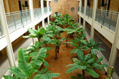 Banana plantation in luxury hotel — Stock Photo