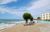 Tree on the beach at luxury hotel — Stock Photo
