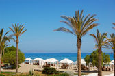 Palm trees at the beach of luxury hotel, Crete, Greece — Stockfoto