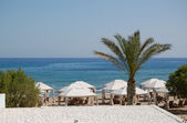 Palm tree at the beach of luxury hotel, Crete, Greece — Stok fotoğraf