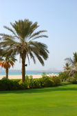 Beach of luxury hotel with a view on Palm Jumeirah man-made isla — Stock Photo