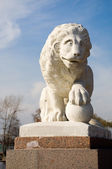 Statue of a lion — Stock Photo
