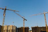 Three cranes — Stock Photo