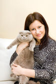 The girl holds a grey cat on hands — Stock Photo