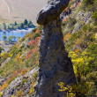 Mountain autumn slope — Foto Stock #3231664