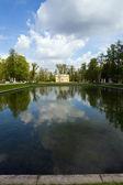 Park pond — ストック写真